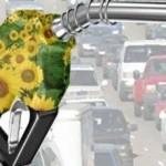 Felfutóban a magyar bioetanol program