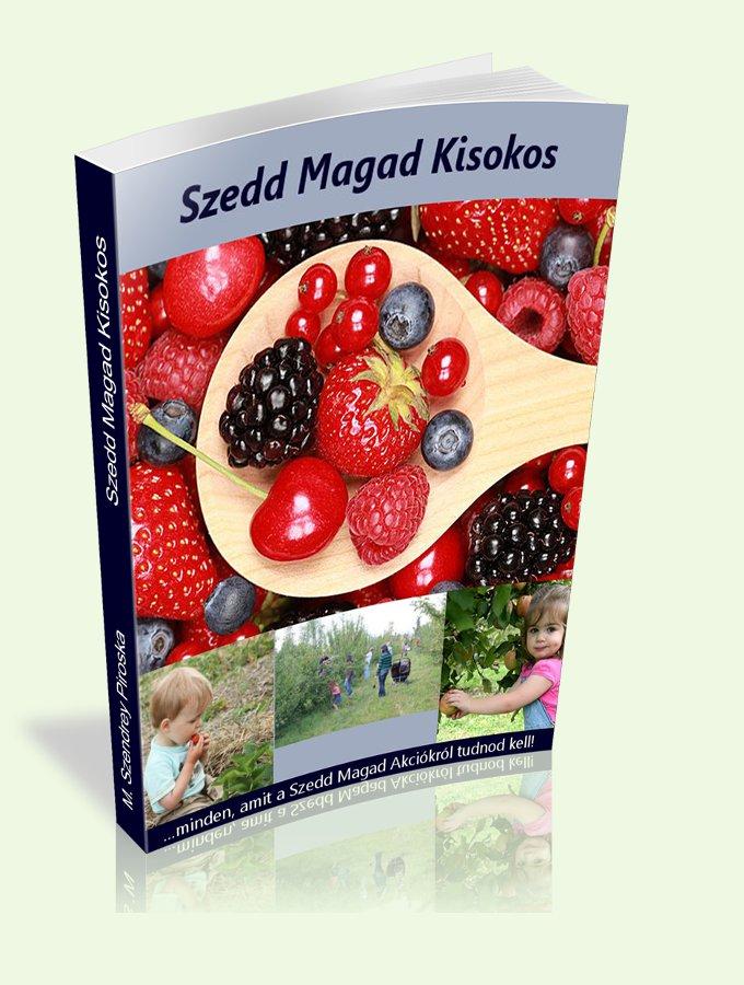 Szedd Magad Kisokos width=