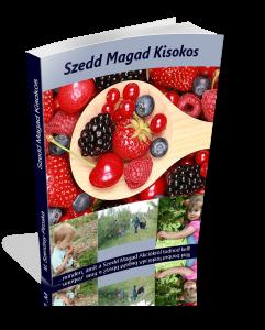 Szedd Magad Kisokos